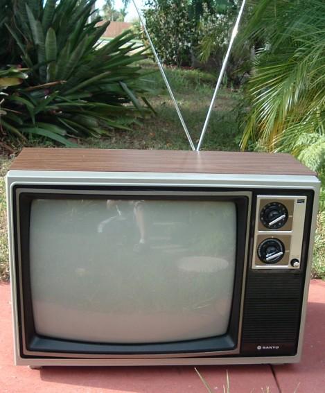 Sanyo Television Set Model 91C520A